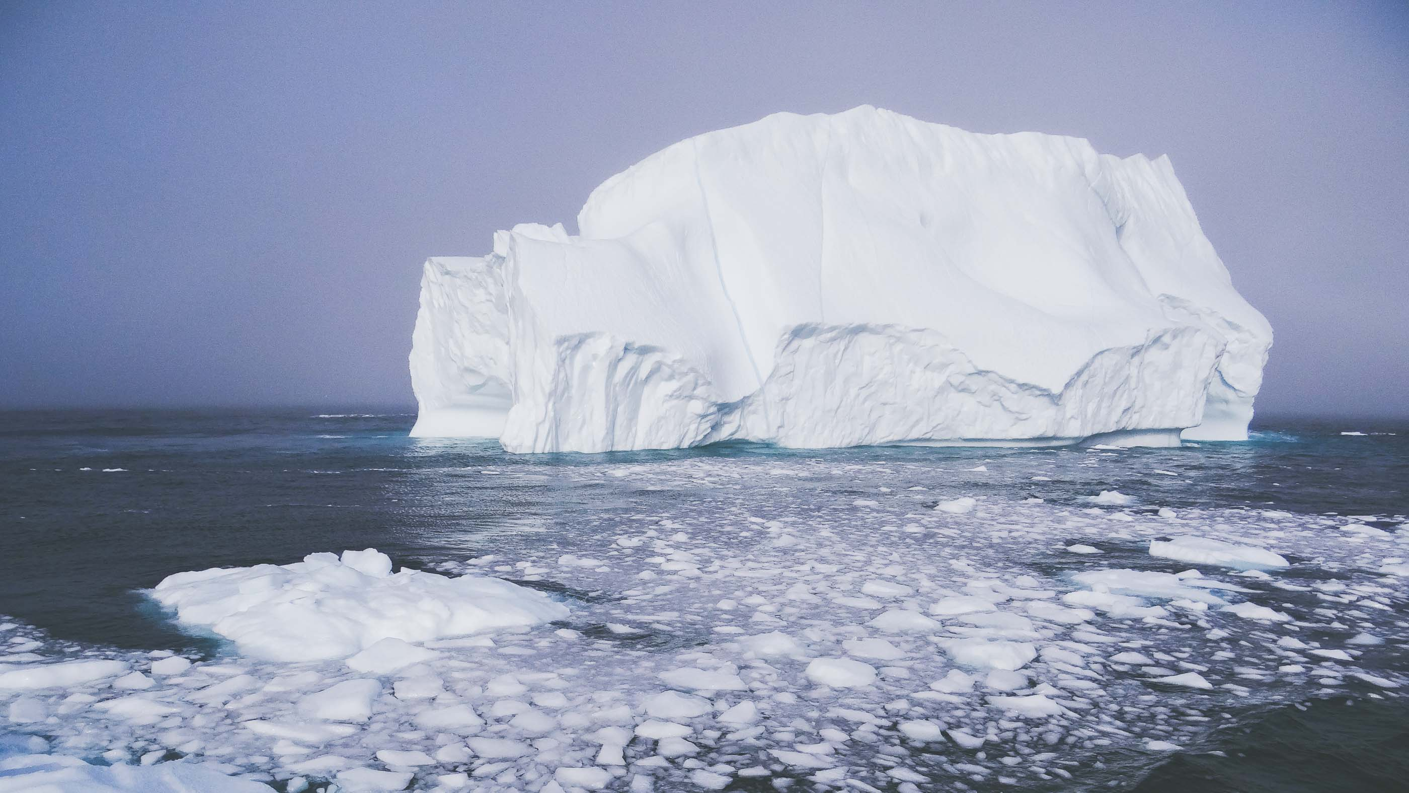 Newfoundland And The World S Biggest Iceberg Parade Adventure Com