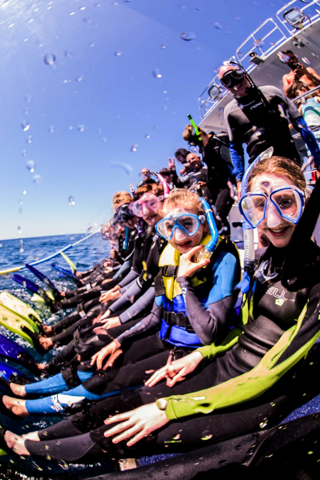 Snorkelers prepare to swim with the whales.