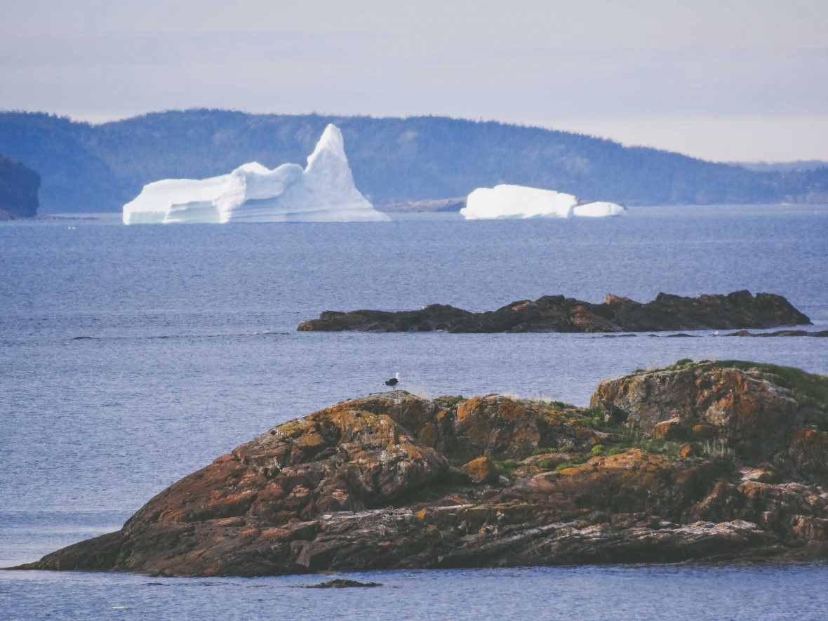 Views of icebergs from Bonavista in Newfoundland.