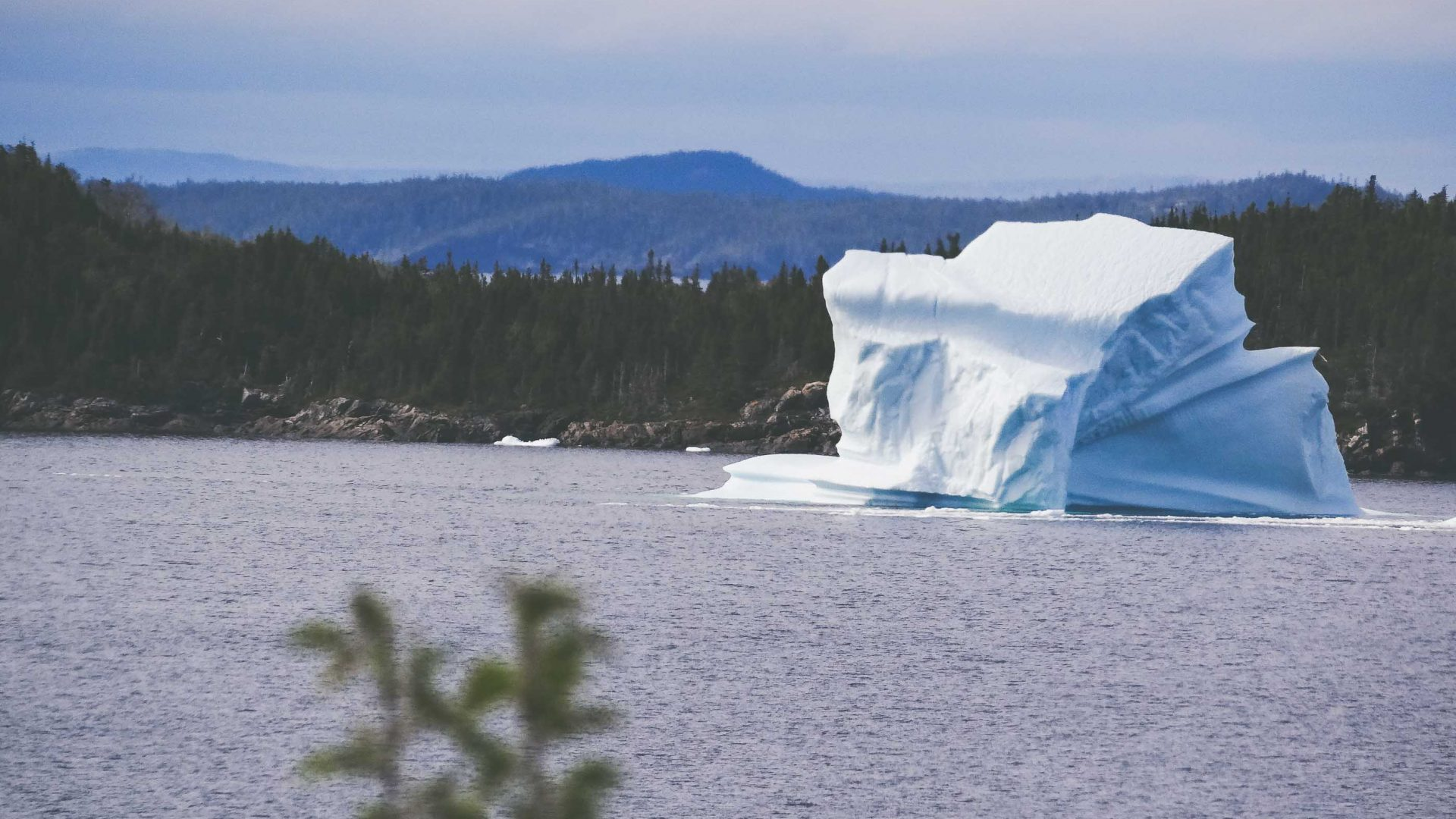 An iceberg coming ashore in Newfoundland.