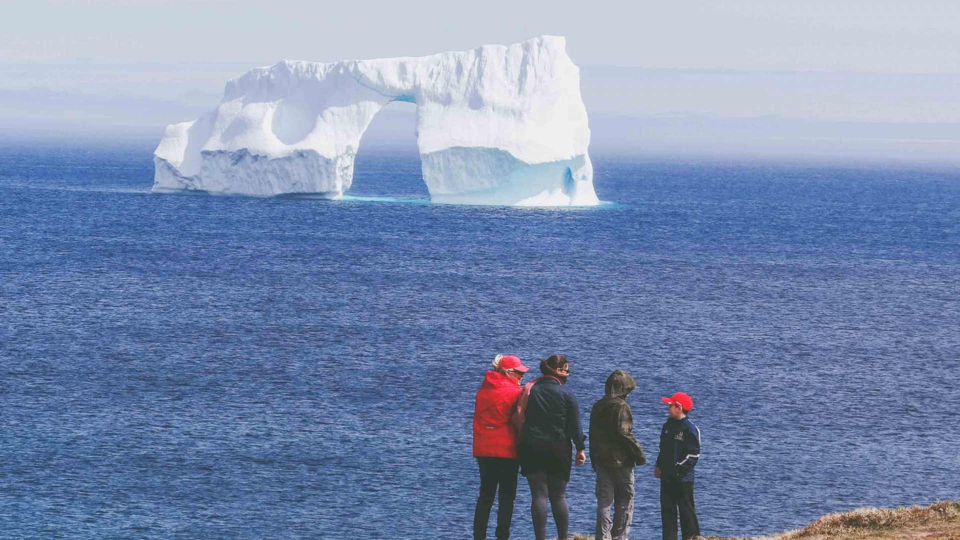 Tourists watch the icebergs float through the waters of Newfoundland.