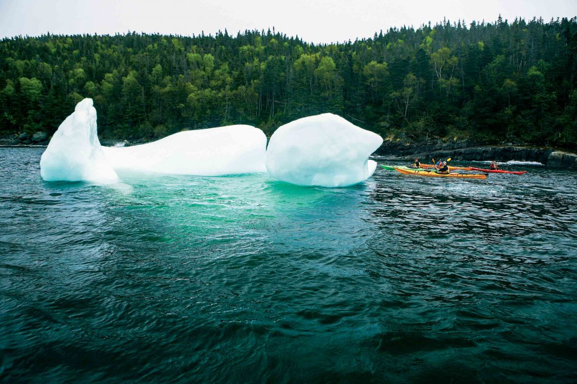 In Newfoundland, 10,000-year-old icebergs, drifting south from the Arctic Circle, pull up in the province's harbors every spring.