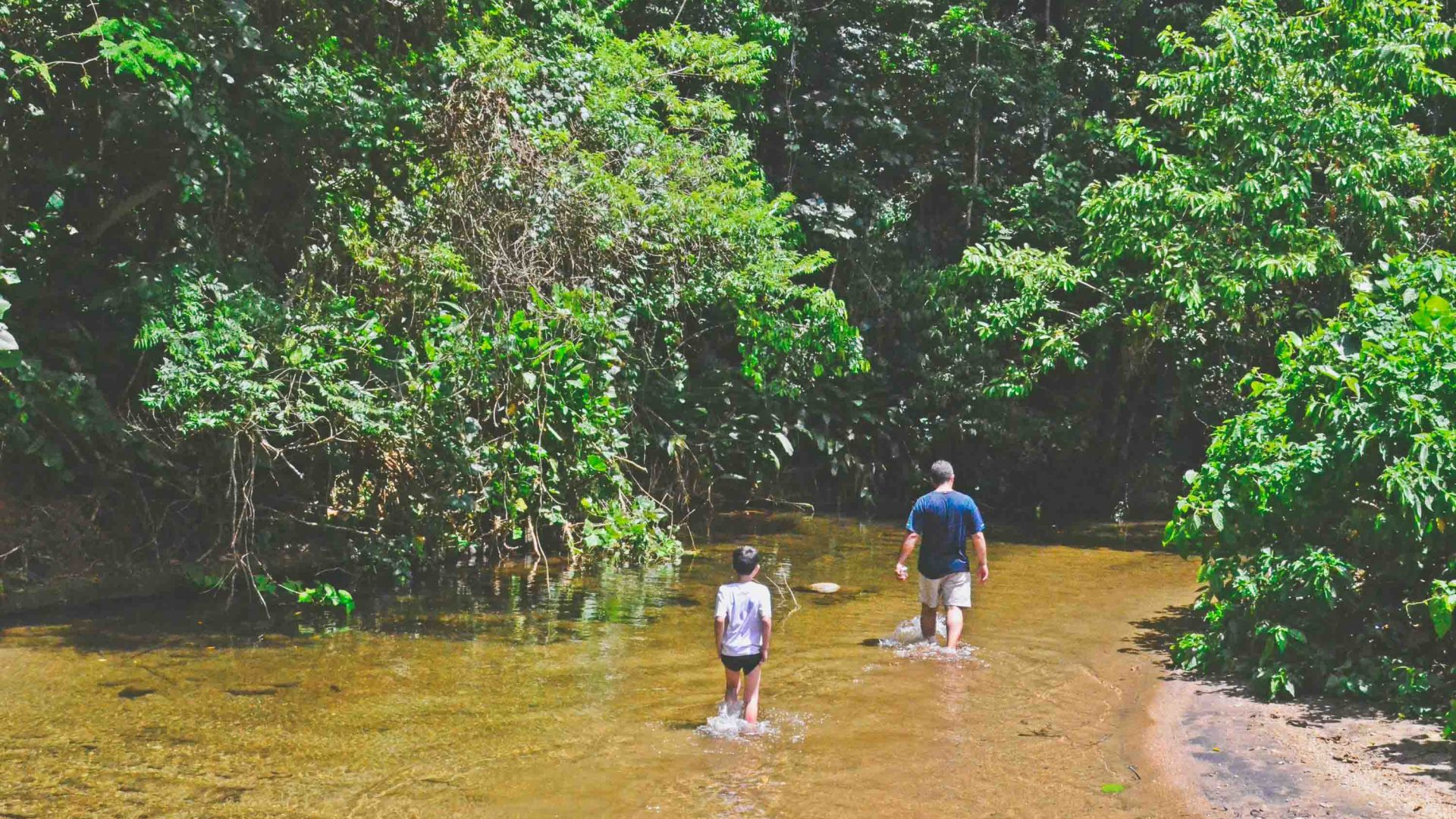 When the road through the Atlantic Rainforest gets covered in water, there's no other choice than to wade through it.