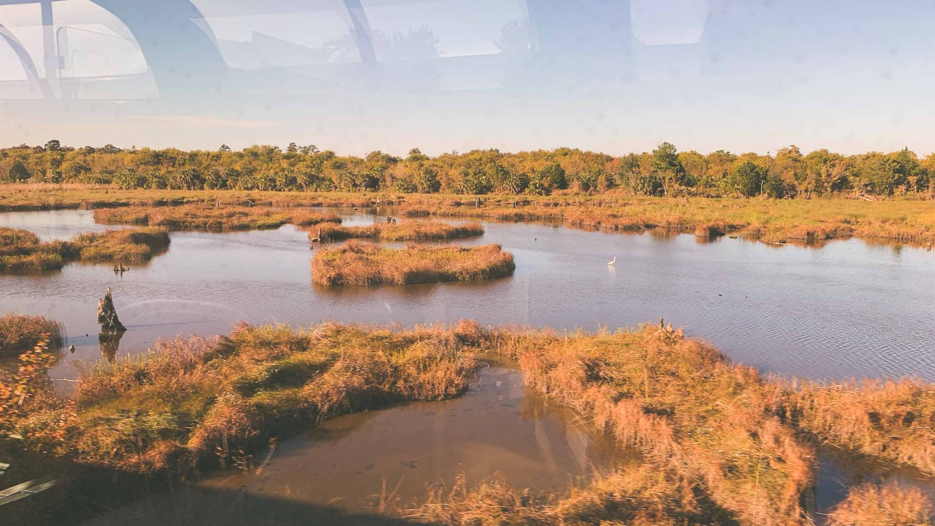 Views out across the bayou (marshy lakes and wetlands) of Louisiana from thre lounge ca.