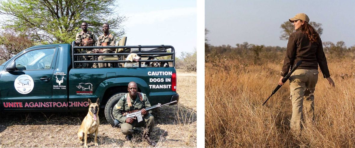 Left: The South African Wildlife College K9 Unit; Right: Lee-Anne on patrol at Ngala.