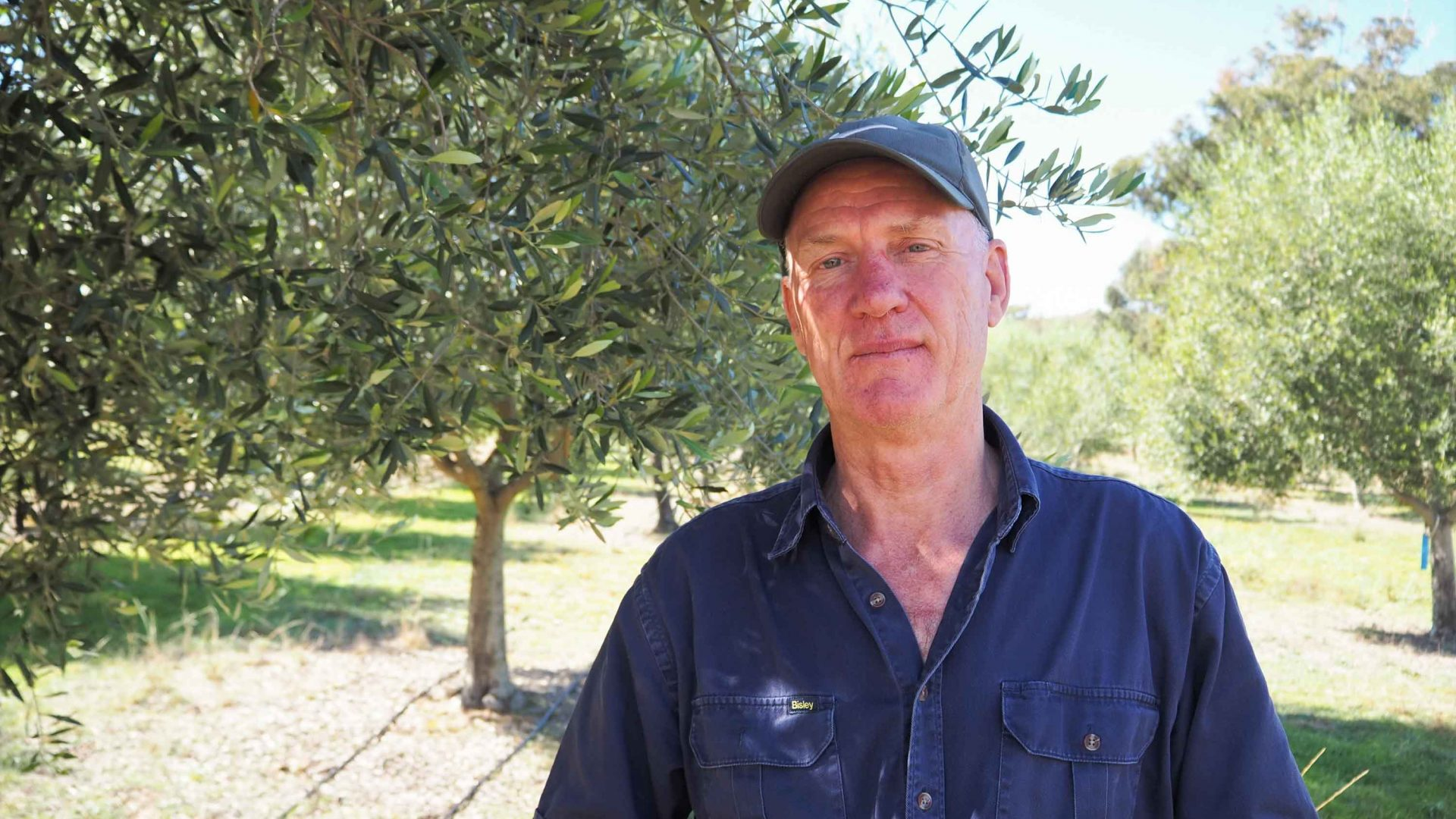 David Sargeant from Karrabool Olives.
