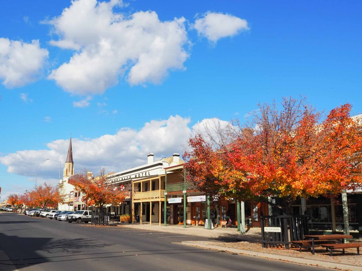 Mudgee Town Centre, awash with autumn colors.