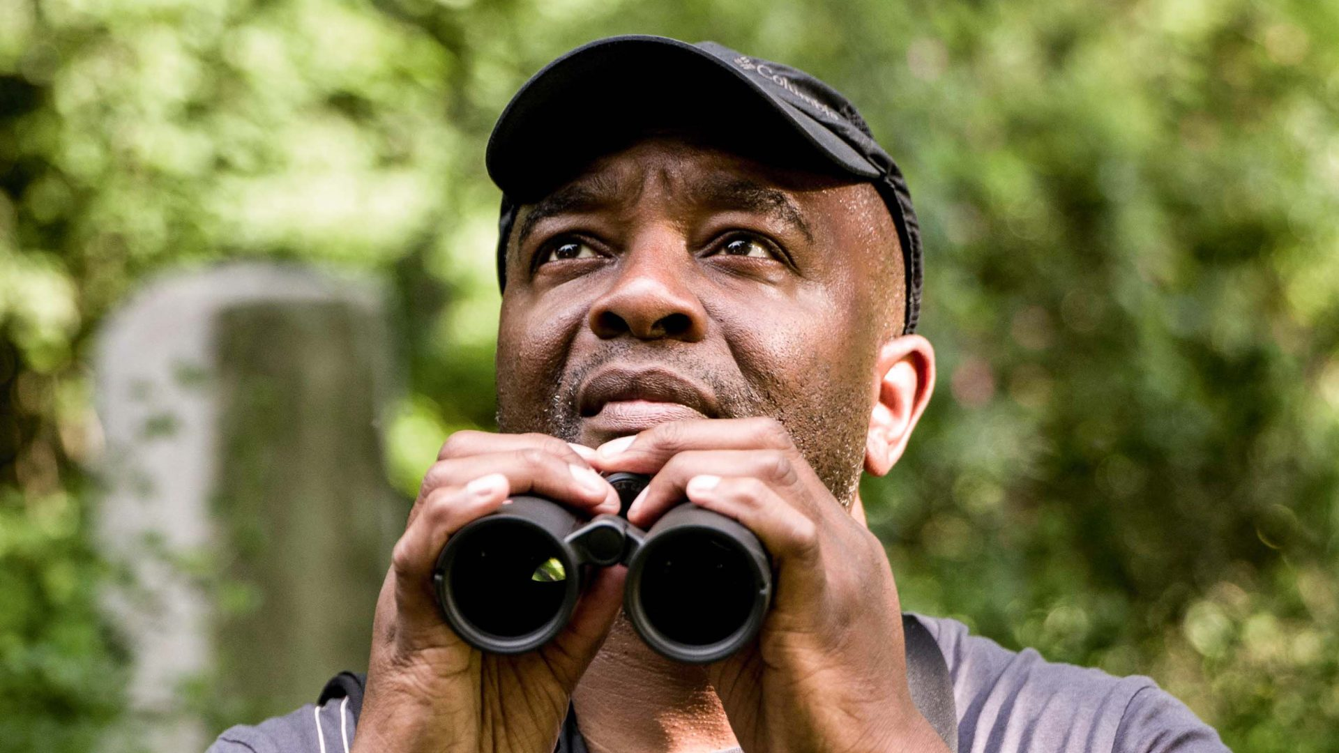 The Urban Birder: The man who wants you to start birdwatching in the city