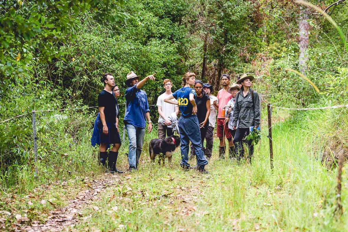 Geoff talks food forestry with students.