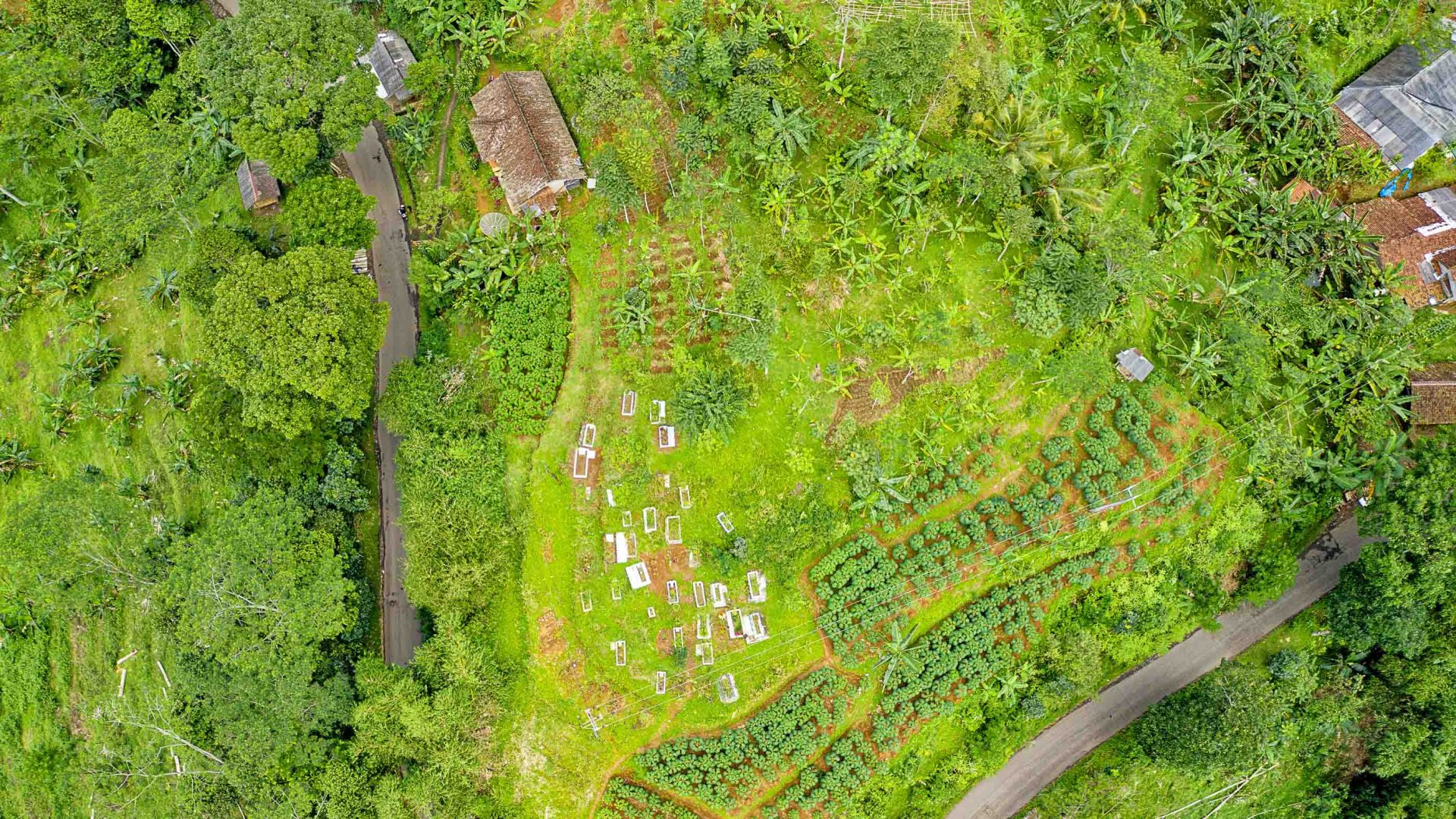 An aerial view over a permaculture garden.