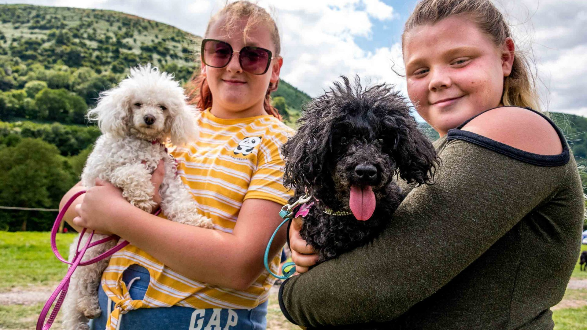 Young girls hold their dogs at the Llanthony Valley and District Show.