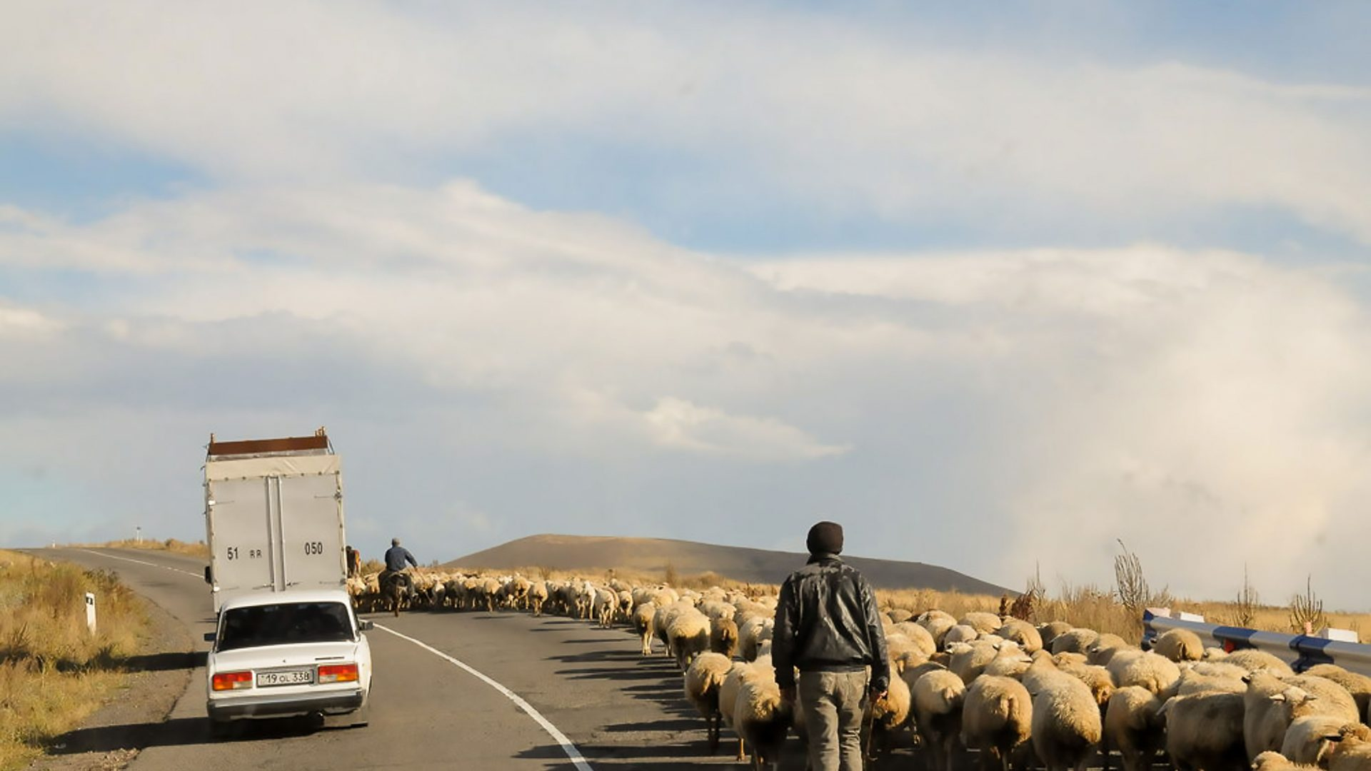 Sheep and traffic compete for road space in Nagorno Karabakh, Armenia.