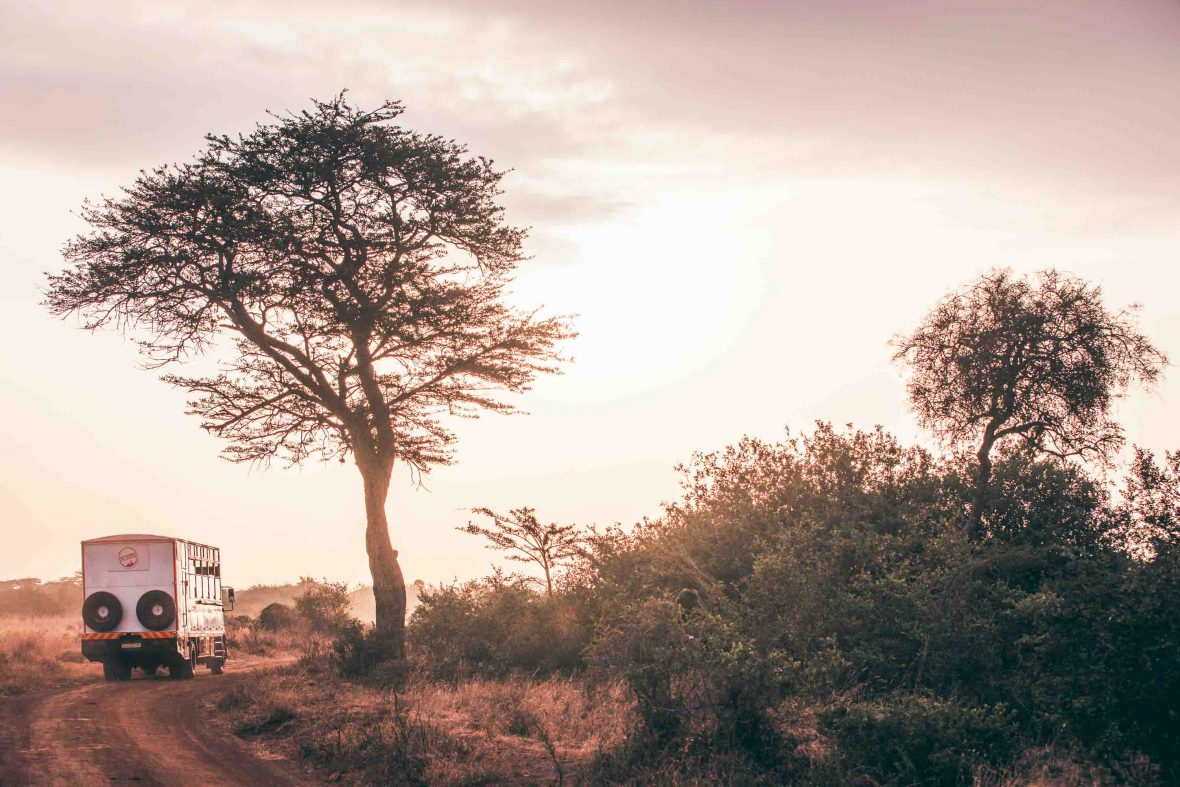 Travelers can journey through Kenya with Becky, East Africa's first female overland truck driver, on this unique women's expedition with Intrepid Travel.