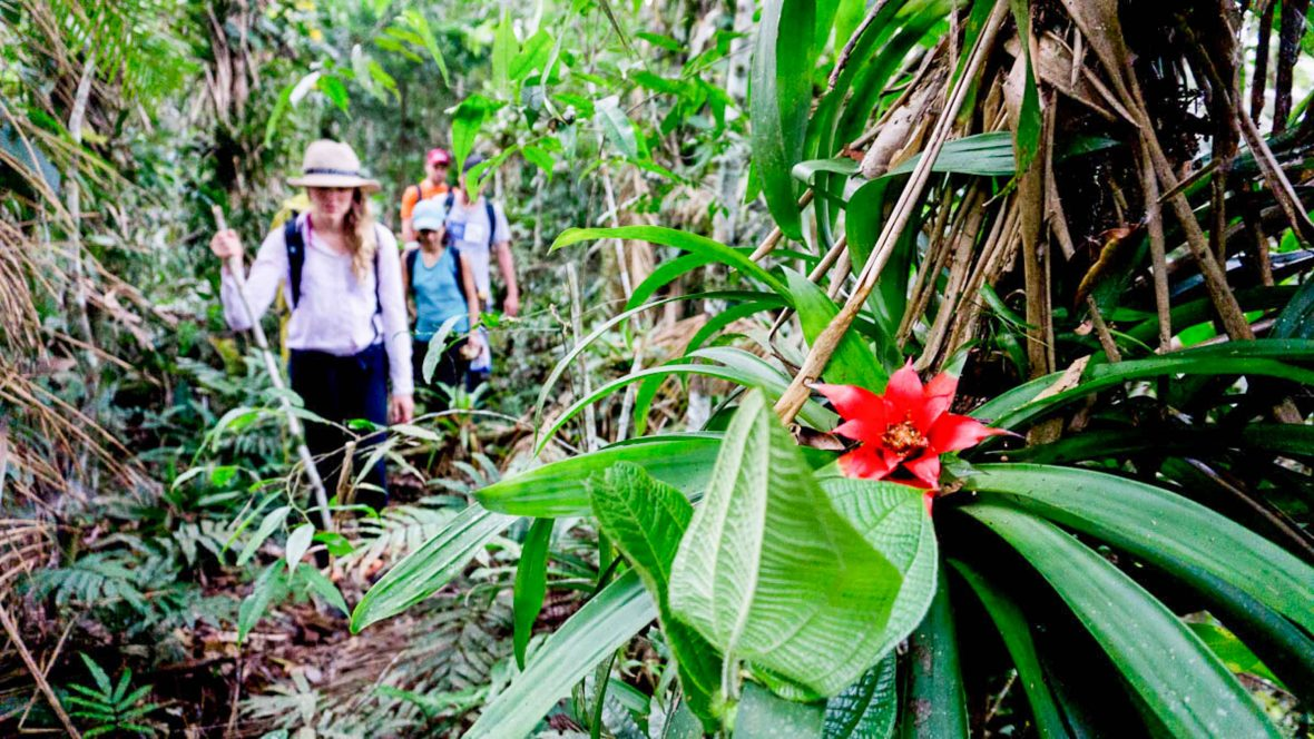 On this trip, travelers will be one of the first explorers to set foot in a remote corner of Colombia while helping to protect the Samana Watershed.