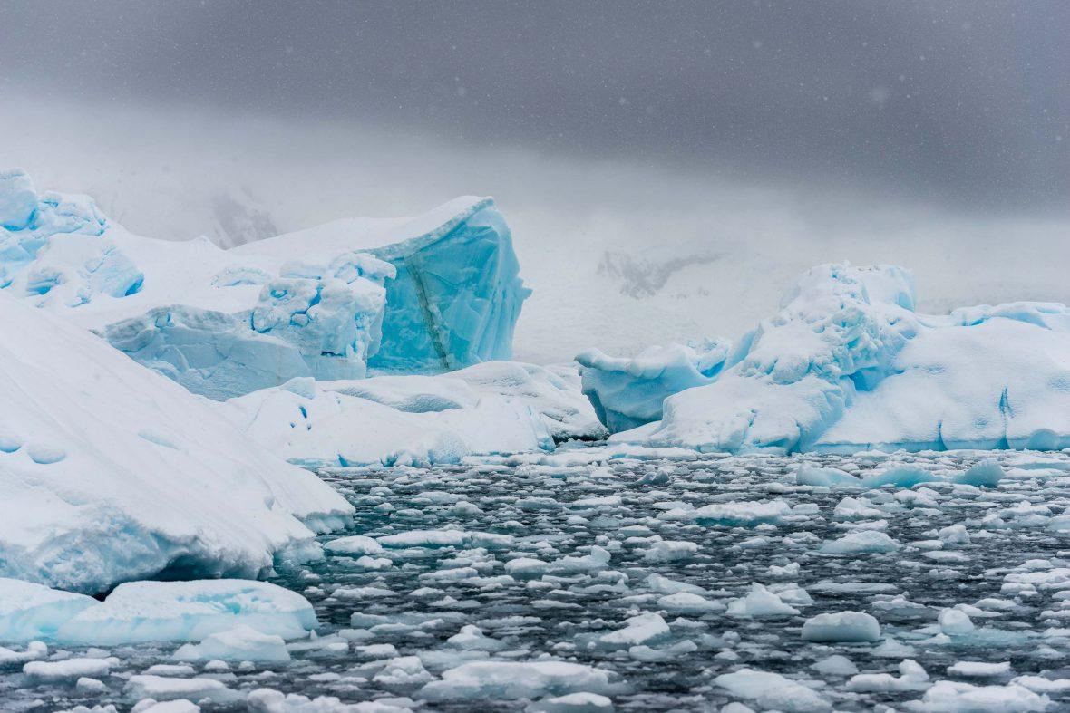 Cuverille Island, Antarctica.