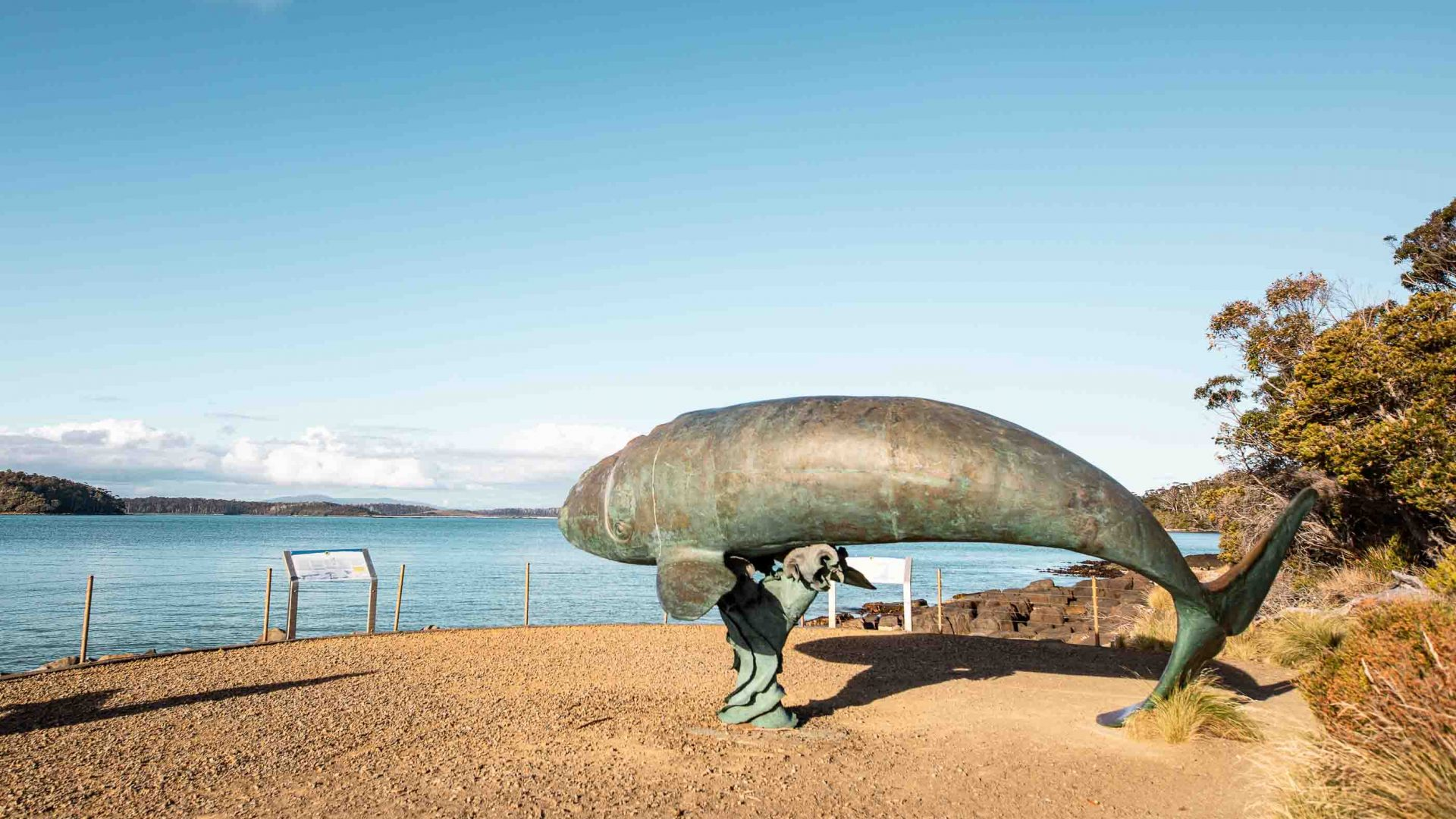 A whale monument by the bay.