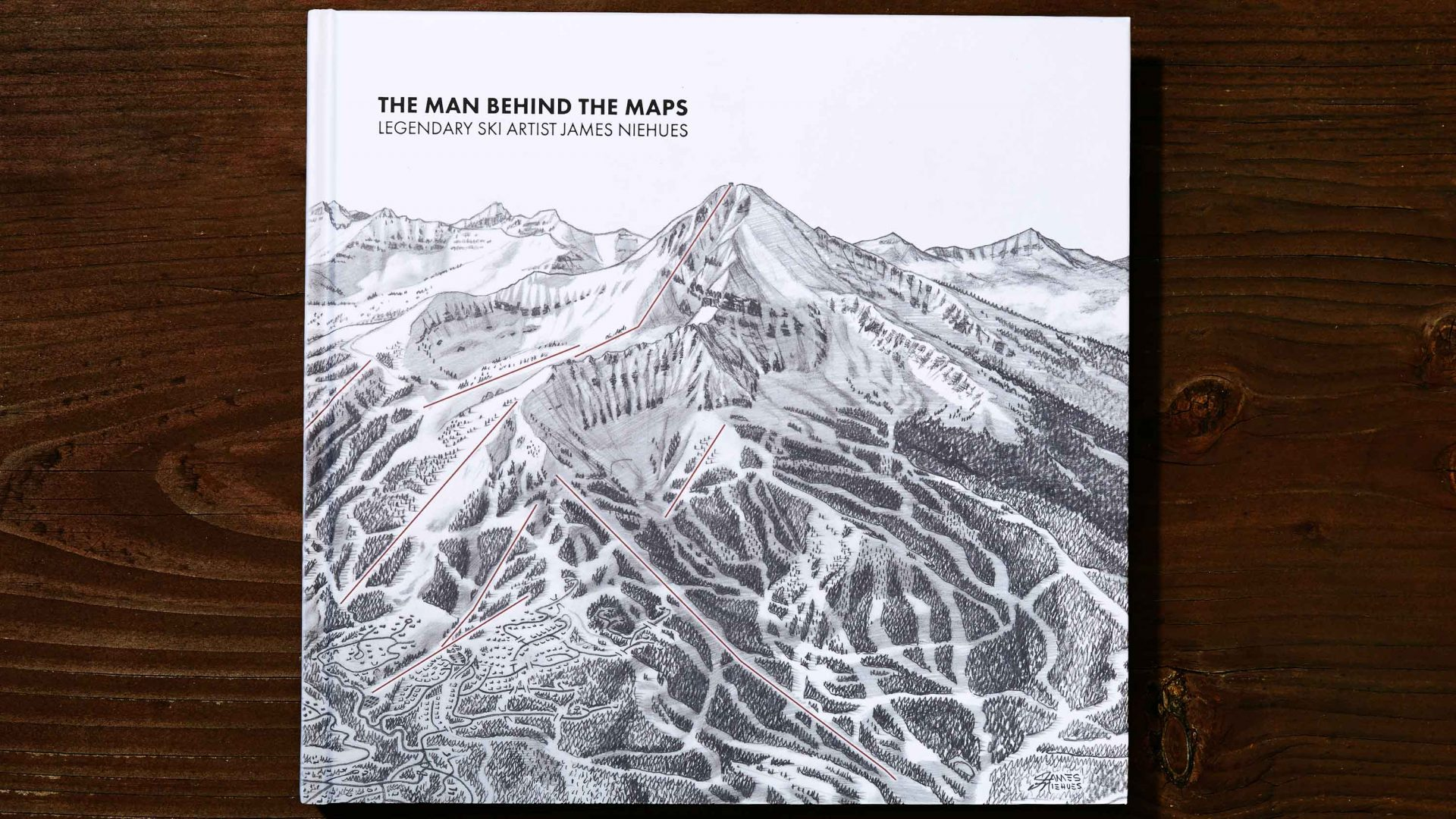 The black-and-white cover of the book showing an illustrated ski resort.