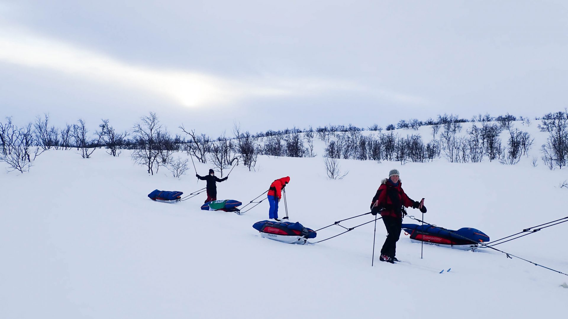 Travelers together pulling their sleds.