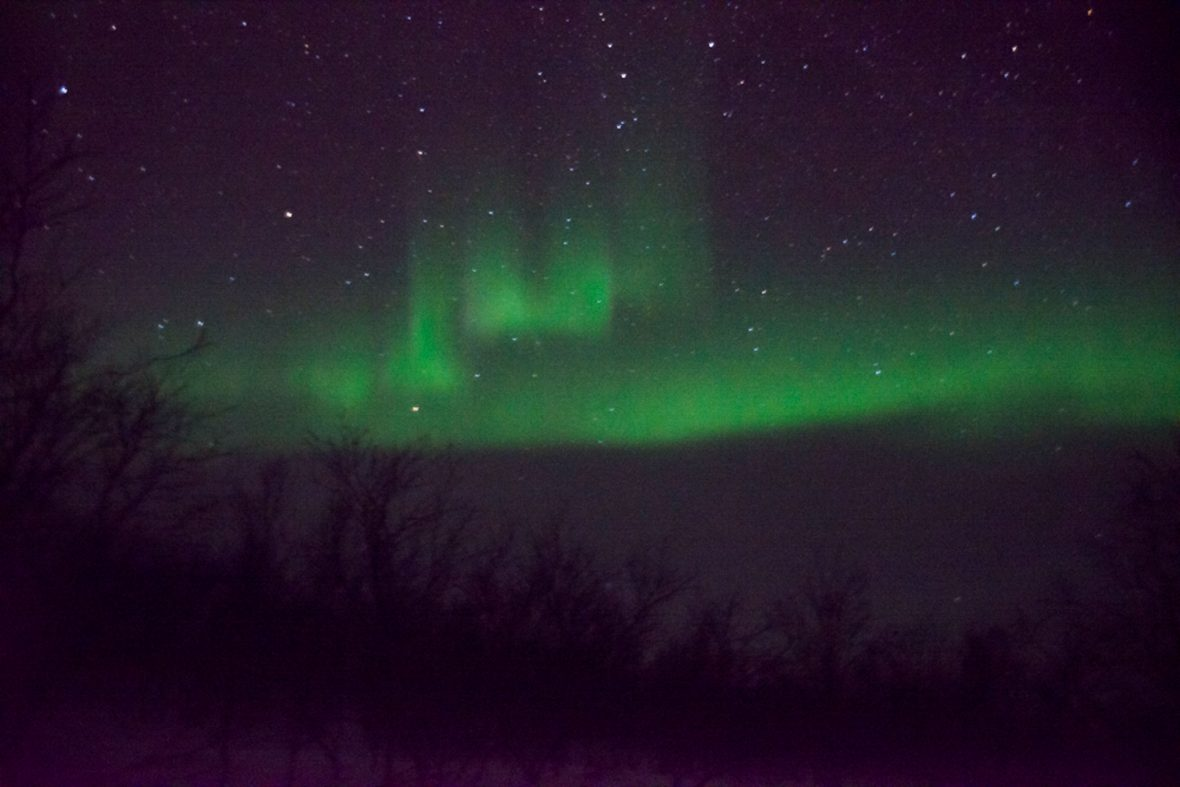 The green of the Northern Lights in the night sky.