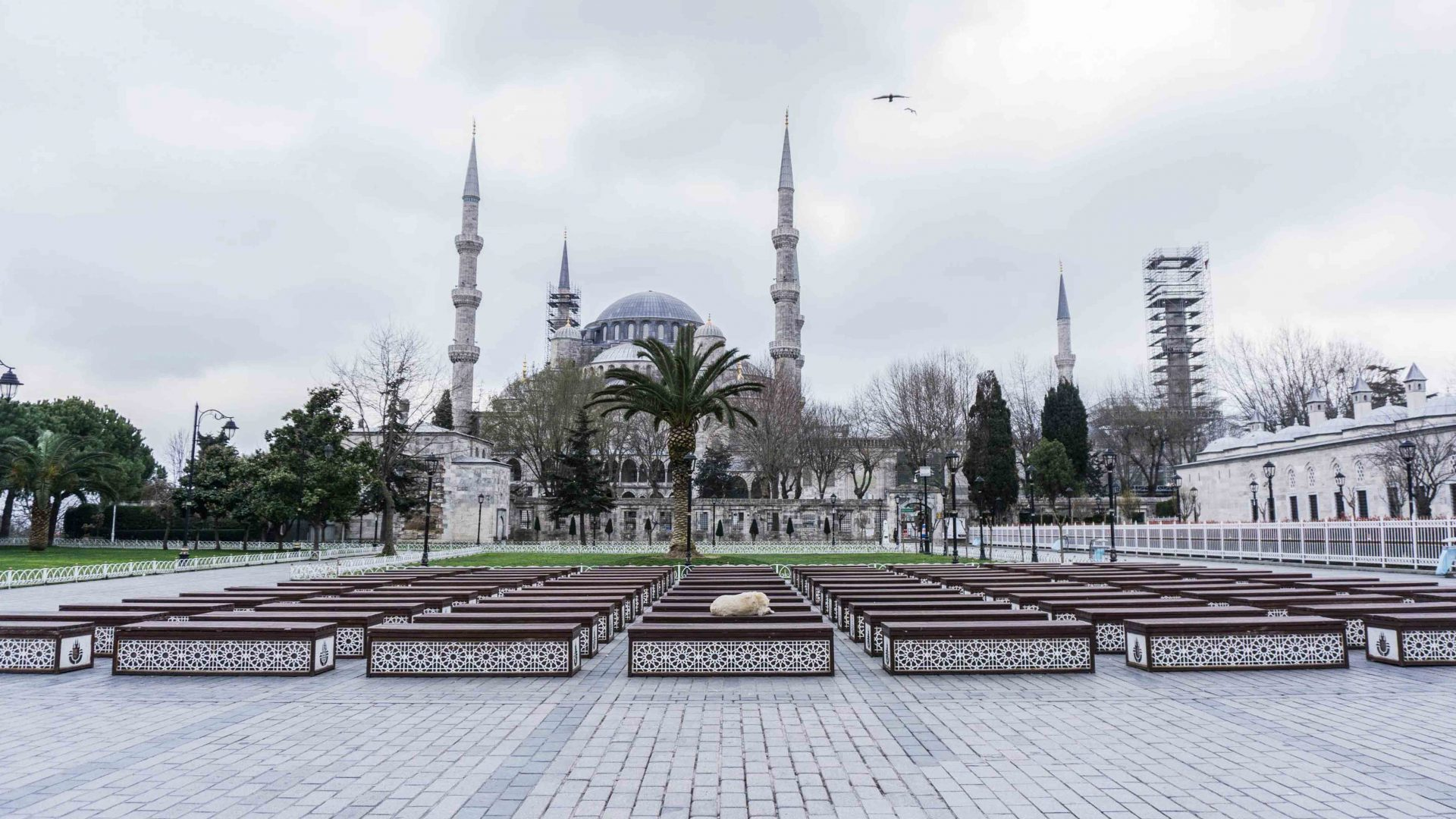 Empty Istanbul: When the city was silenced