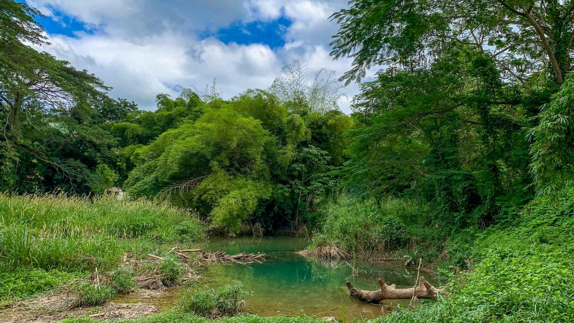 Landscape en route to the Rastafari Indigenous Village