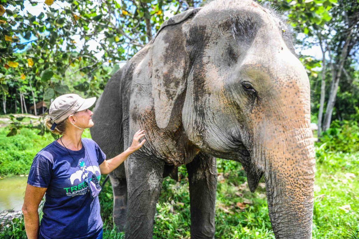 A woman touches the side of an elephant.