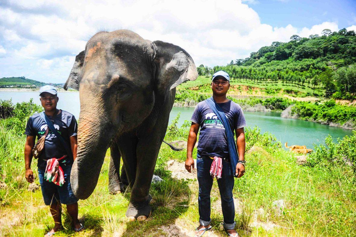 Two mahouts stand alongside an elephant.