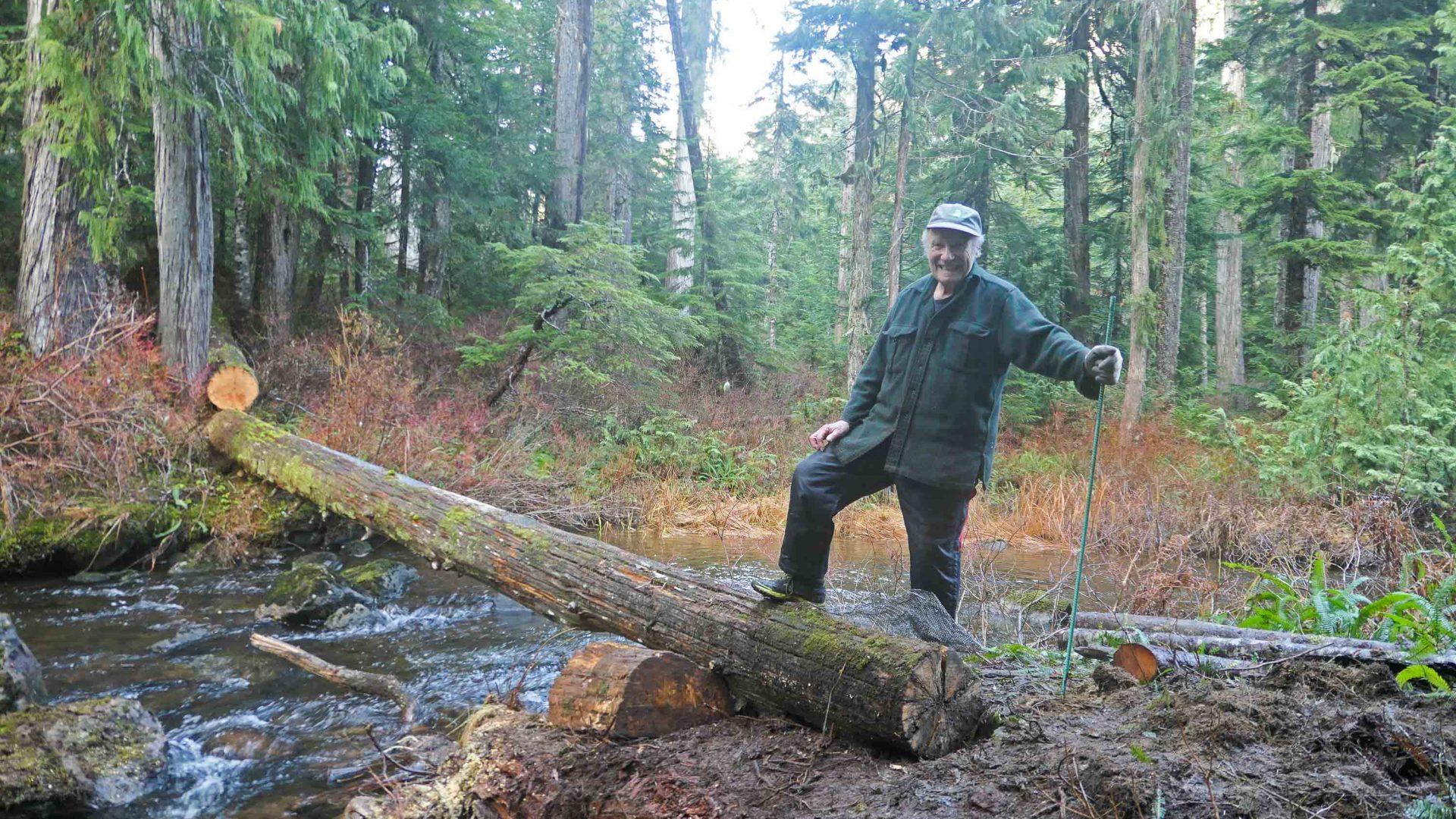 A man stands on a log bridge.