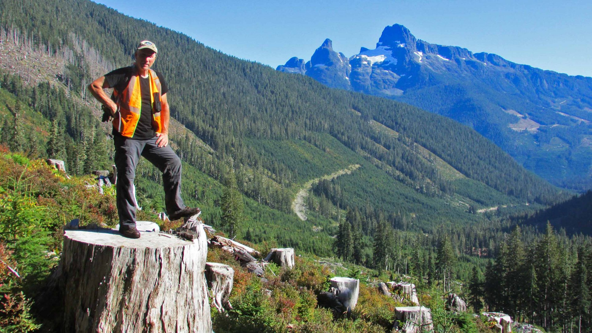 A man stands on a log on part of a cleared trail.