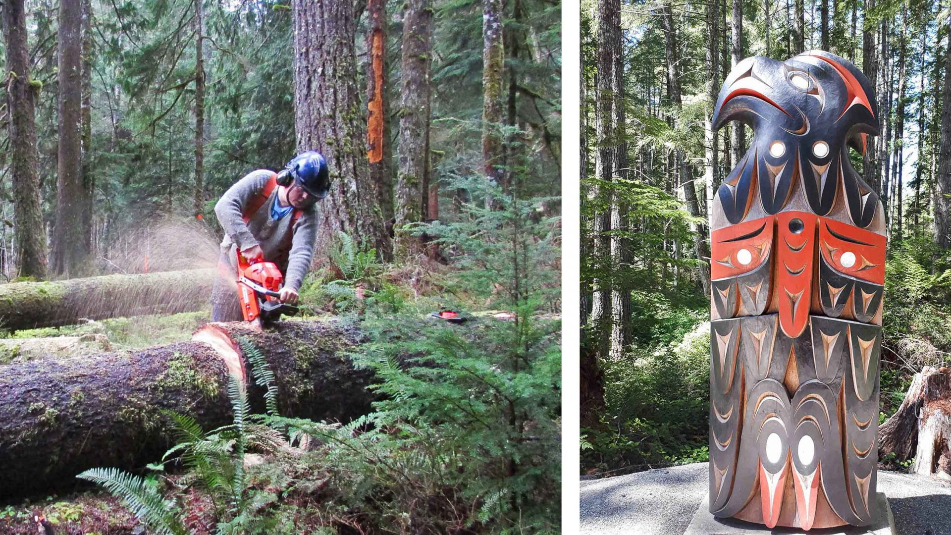 Left: Cutting back trees on the White R trail Right: A Yos Totem, N of Stebbings.