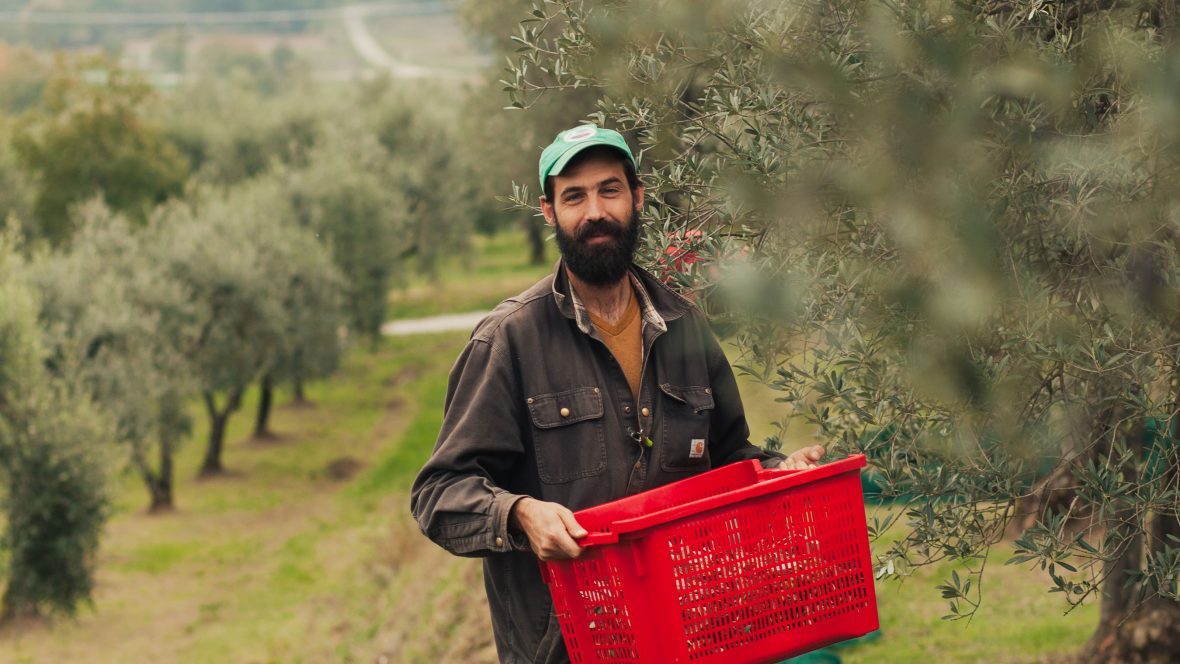 Ever just wanted to move to Tuscany and make olive oil? This New Yorker did just that